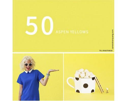 Phông màu Vàng số 50 Canary