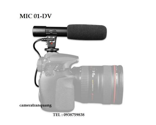 Micro 01-DV for DSLR & Handycam