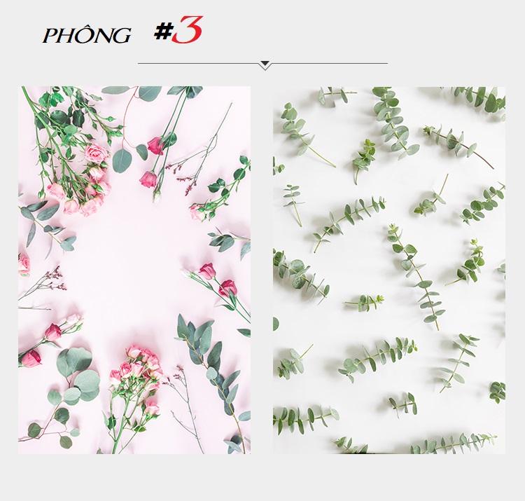 Mẫu số 3 -Phông 3D nền Hoa-Lá