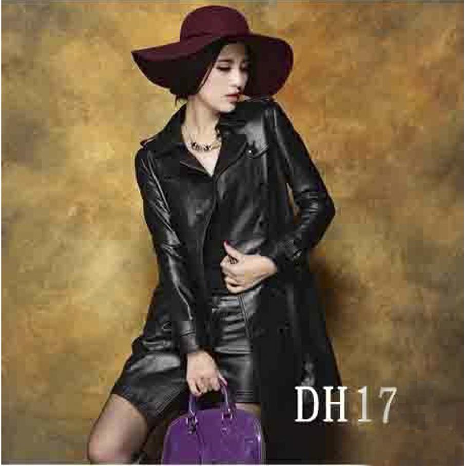 Phông DH17