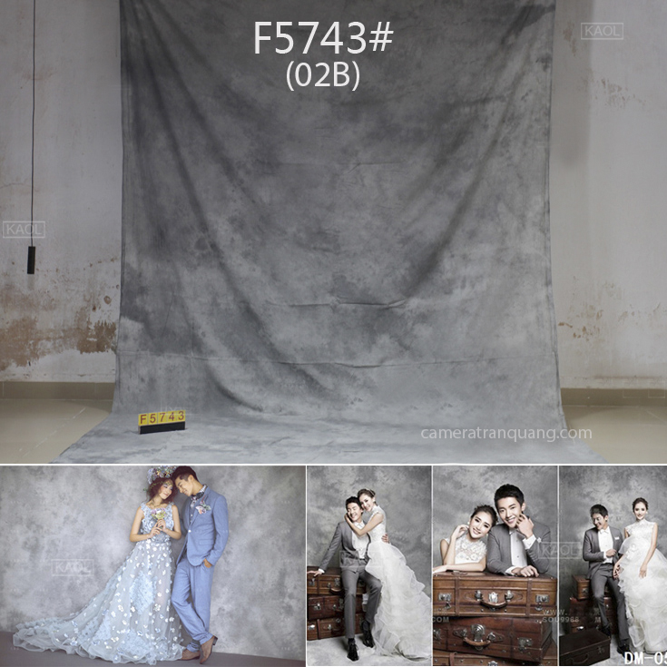 Phông vải Art F-5743 (02B)